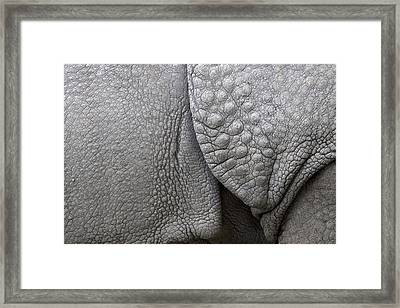 Structure Of The Skin Of An Indian Rhinoceros In A Zoo In The Netherlands Framed Print by Ronald Jansen