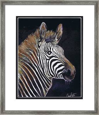 Strutting His Stipes Framed Print