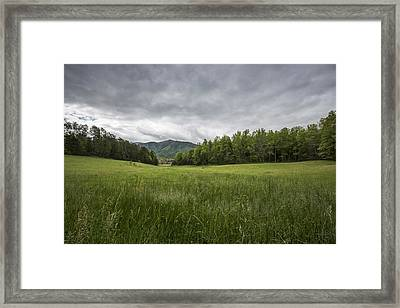 Stuck In The Field Framed Print