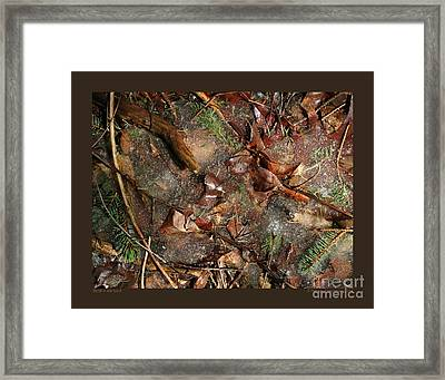 Stuck In The Ice-ii Framed Print by Patricia Overmoyer