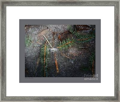 Stuck In The Ice-iii Framed Print by Patricia Overmoyer