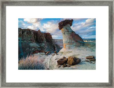 Stud Horse Point 2 Framed Print