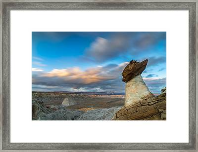 Stud Horse Point Framed Print by Larry Marshall