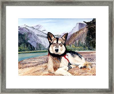 Studebaker Framed Print by Donald Gazzaniga