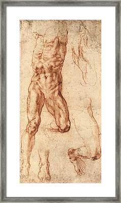 Studies For Haman Framed Print by Michelangelo Buonarroti
