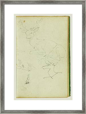 Studies Of A Seated Stag, A Fawn, A Goat Head Théodore Framed Print