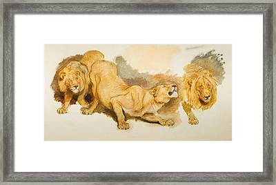 Study For Daniel In The Lions Den Framed Print by Briton Riviere