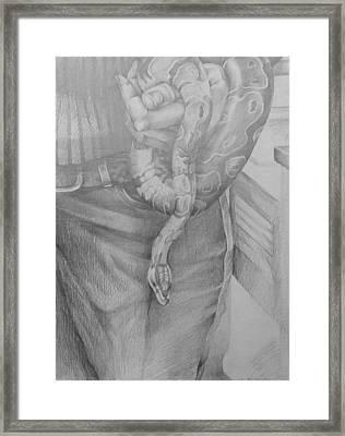 Study For Entanglement Framed Print by Julie Orsini Shakher