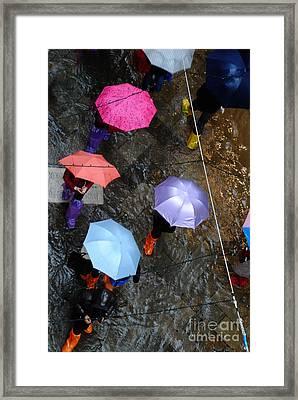 Study In Acqua Alta Rain Gear Framed Print by Jacqueline M Lewis