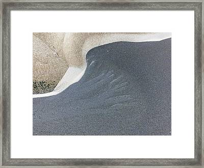 Study In Grey Framed Print