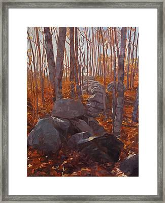 Study In Reds And Grays Framed Print