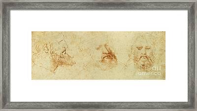 Study Of A Male Head Framed Print by Leonardo Da Vinci