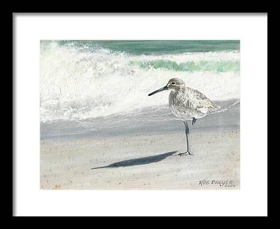 Sandpiper Framed Prints