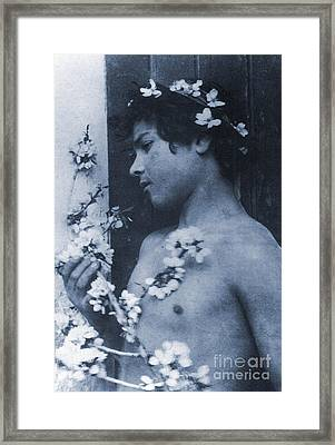 Study Of A Young Boy With Flowers In His Hair Framed Print by Wilhelm von Gloeden