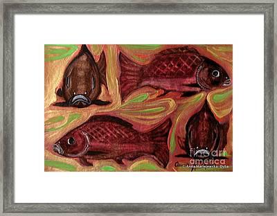 Study Of Fish Framed Print by Anna Folkartanna Maciejewska-Dyba