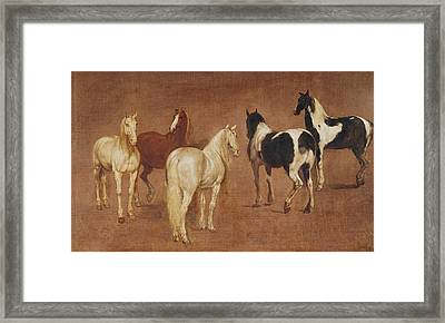 Study Of Five Horses Oil On Canvas Framed Print