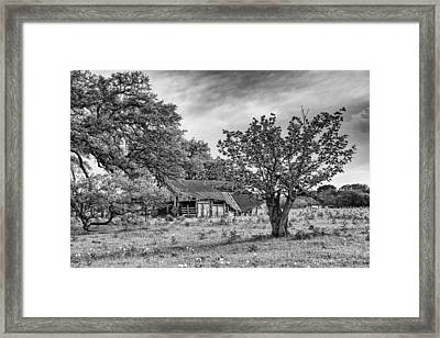 Study Of Rural Life In Smithville Texas Framed Print by Silvio Ligutti