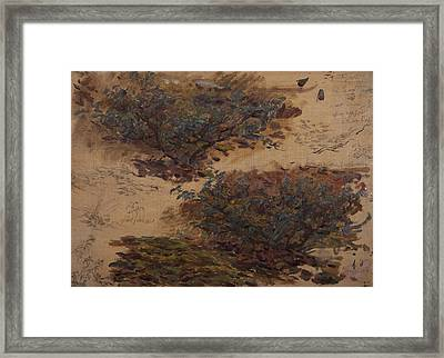 Study Of Trees Framed Print