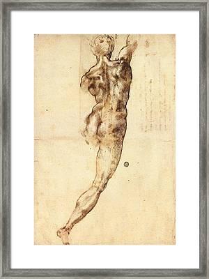 Study To Battle Of Cascina Framed Print by Michelangelo Buonarroti