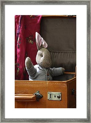 Stuffed Bunny In A Suitcase Framed Print