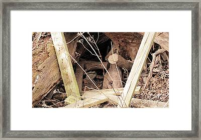 Stump Hollow Framed Print by Charlie Spear