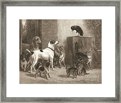 Stump Orator 1881 Framed Print