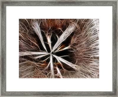Stumped Framed Print by Shane Bechler