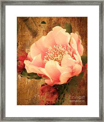 Stunning Pink Prickly Pear Framed Print