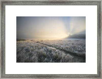 Stunning Sun Beams Light Up Through Thick Fog Of Autumn Fall Fro Framed Print