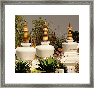 Stupas In A Buddhist Monastery Framed Print by Jaina Mishra