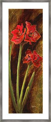 Sturdy Blooms II Framed Print by Vic  Mastis