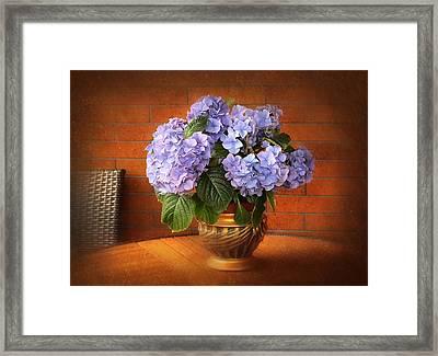 Stylish Hydrangea Framed Print