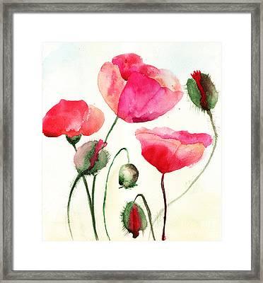 Stylized Poppy Flowers Illustration  Framed Print