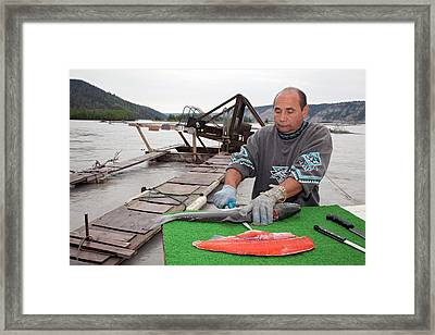 Subsistence Fishing In Alaska Framed Print by Jim West
