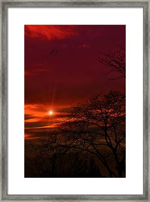 Suburban Skies Framed Print by Tom York Images