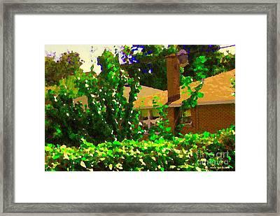 Suburban Summer Scene Backyard Retreat Shrubs And Flowers Cote St Luc  Quebec Carole Spandau Framed Print by Carole Spandau