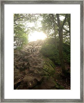 Success Ahead - Light Through The Trees Framed Print by Ellie Philpotts