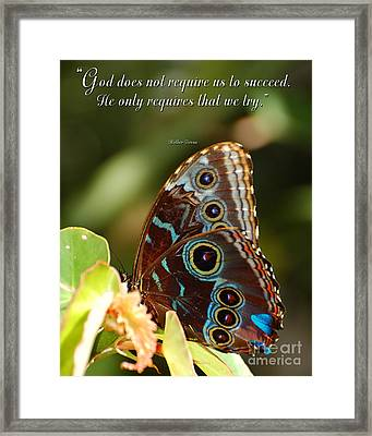 Success Framed Print by Diane E Berry