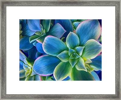 Succulent Blue On Green Framed Print