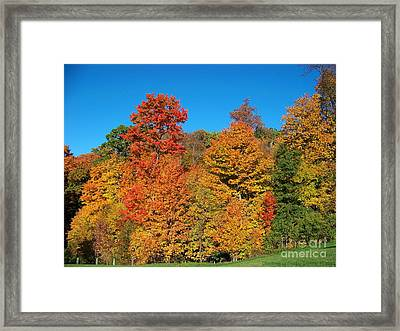 Such A Colorful Day 2 Framed Print