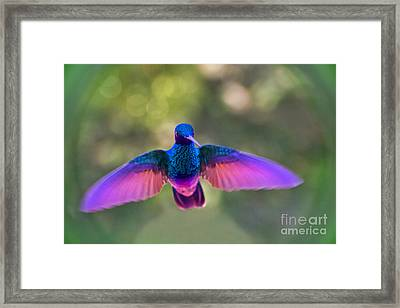 Such Concentration Framed Print
