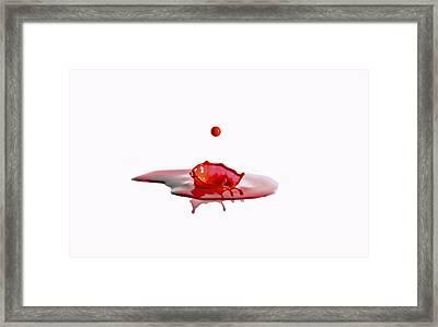 Sudden Inpact Framed Print by Brendan Quinn