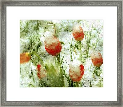 Suddenly Snow Framed Print by RC deWinter