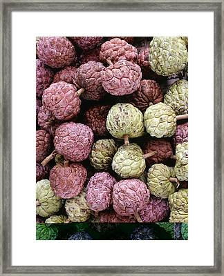 Sugar Apple (annona Squamosa) Framed Print by Science Photo Library