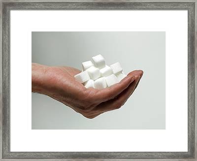 Sugar Consumption Framed Print