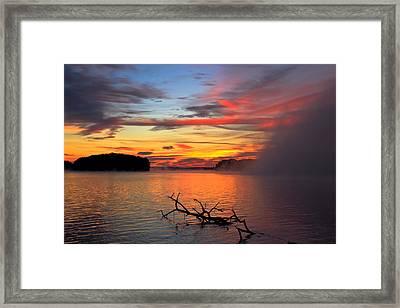 Sugar Creek Sunrise As The Fog Rolls In Framed Print by Reid Callaway