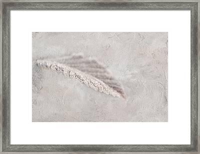 Sugar Crush Framed Print