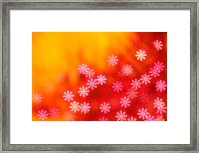 Sugar Magnolia Framed Print