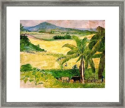 Sugar Plantation 1808 Framed Print