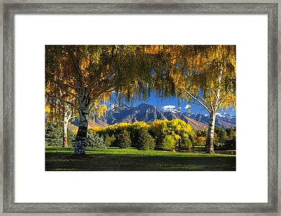 Sugarhouse Park Salt Lake City Ut Framed Print